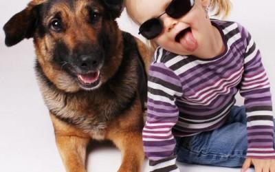 Kinder und Tiere 1